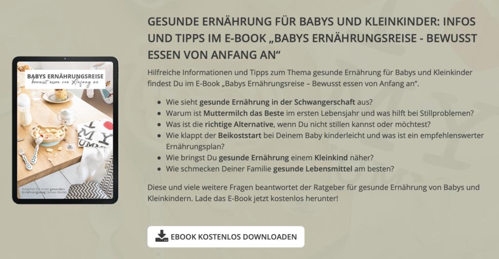 kostenloses ebook Babys Ernährungsreise