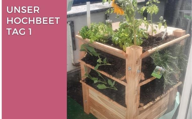 kohlrabi Gemüse Kinderfragen fragen von Kindern Antwort einer mama, mama schreibt ne liste Hochbeet auf Balkon